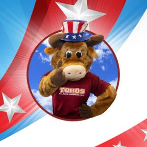 Elections Banner - Teddy